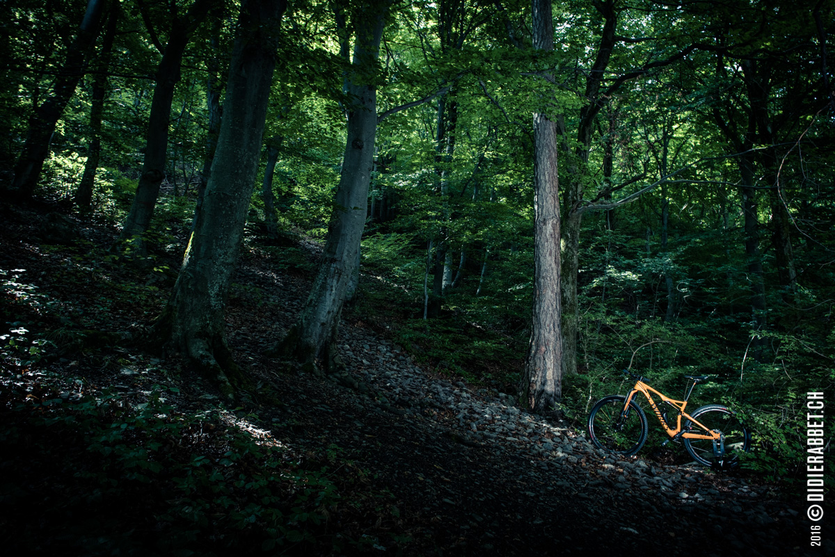 Specialized - Epic - S'works